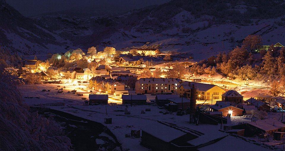 Шавник у зимској ноћи